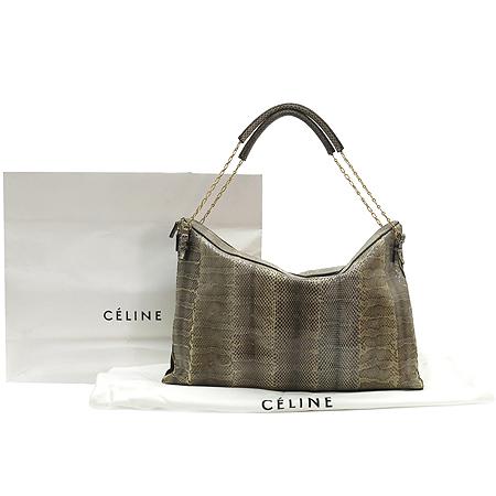 Celine(셀린느) BL3AB022 뱀피 레더 금장 체인 숄더백