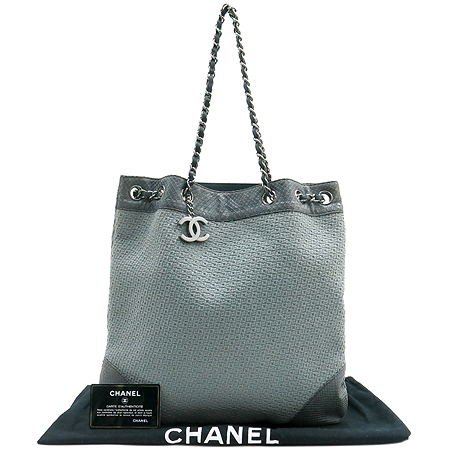 Chanel(샤넬) A31495 COCO로고 뱀피 은장 체인 숄더백 [부산본점]