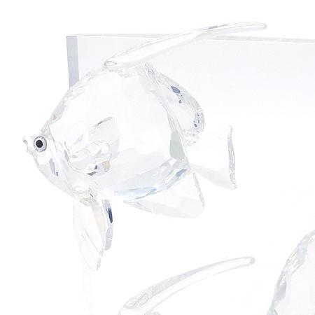 Swarovski(스와로브스키) Wonders Of The Sea 크리스탈 물고기 장식품