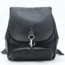 Louis Vuitton(루이비통) M30172 타이가 레더 블랙 CASSIAR(카시아) 백팩 [강남본점]